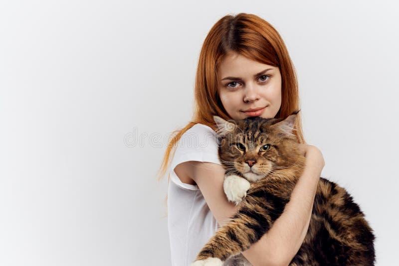 A mulher bonita nova no fundo branco guarda um gato, racum de maine, animais de estimação fotos de stock