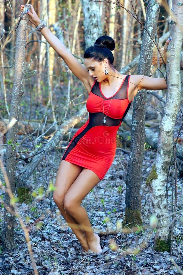 Mulher bonita nova no vestido vermelho foto de stock
