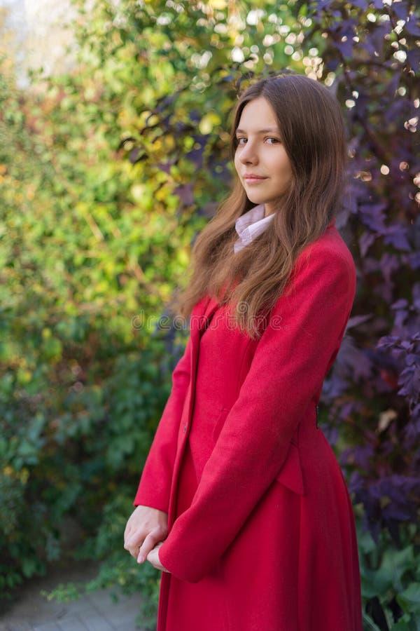Mulher bonita nova que está no parque do outono fotos de stock