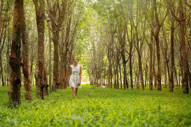 Mulher bonita que anda na floresta fotografia de stock royalty free