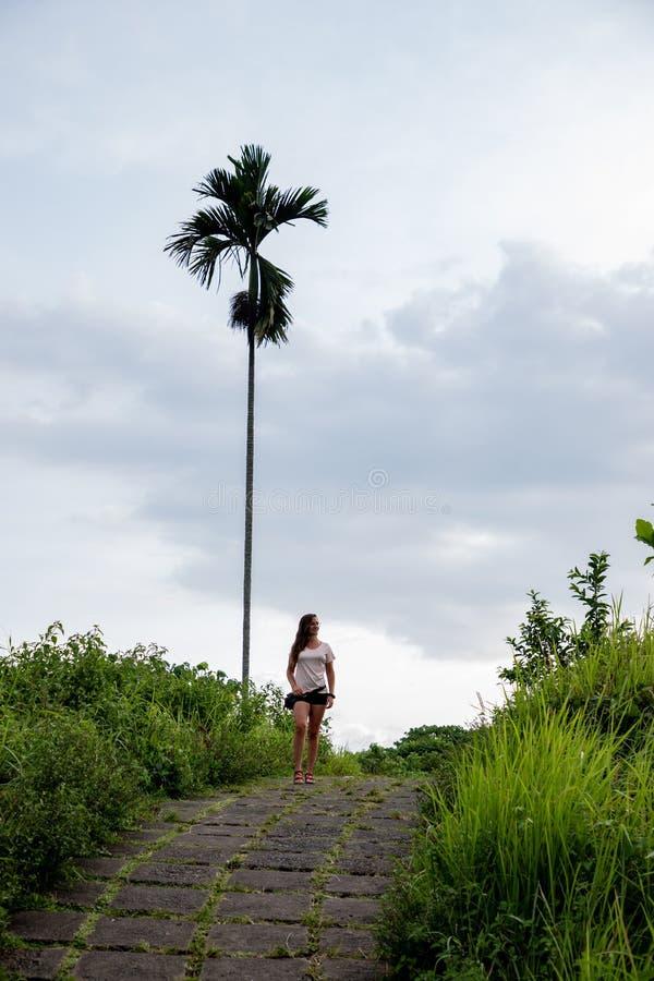Mulher bonita que caminha no trajeto famoso das telhas cercado por campos do arroz e por uma palma em Bali & em x28; Indonésia imagens de stock royalty free