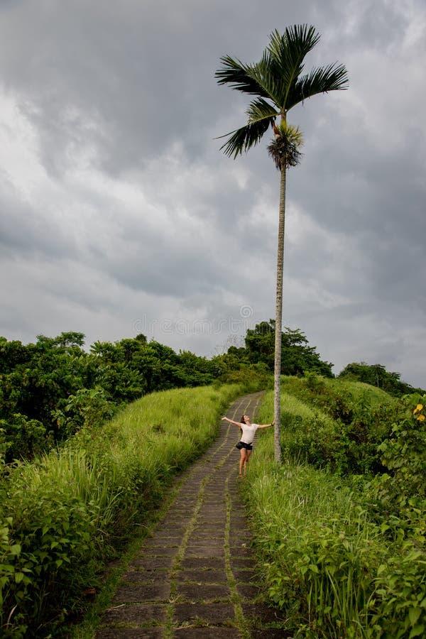 Mulher bonita que caminha no trajeto famoso das telhas cercado por campos do arroz e por uma palma em Bali & em x28; Indonésia fotografia de stock royalty free