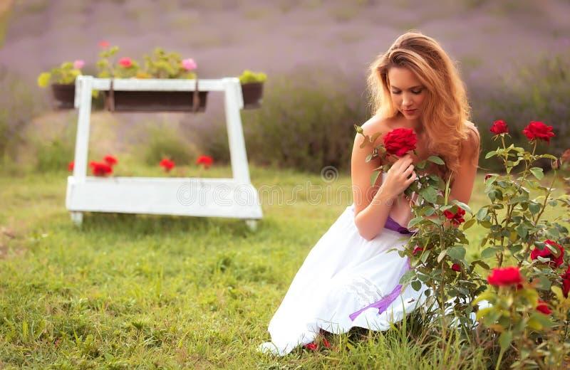 mulher bonita que cheira uma rosa fotografia de stock