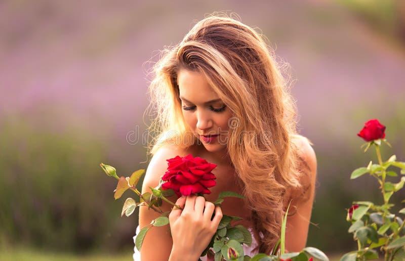 mulher bonita que cheira uma rosa imagens de stock