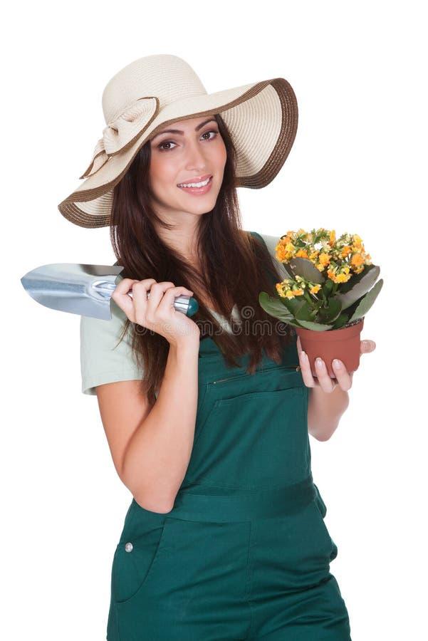 Mulher bonita que guarda a planta e a pá da jardinagem imagem de stock