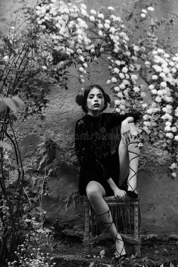 Mulher bonito no preto, vestido do laço que senta-se na cadeira de vime imagem de stock
