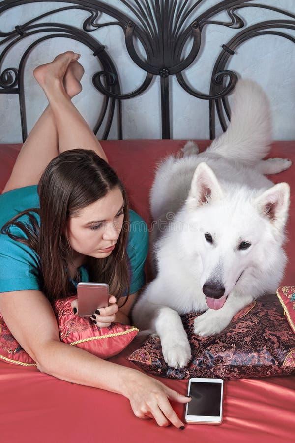 A mulher caucasiano atrativa nova encontra-se com o cão expressivo da raça suíça grande do pastor na cama coberta coral, ambos co fotos de stock royalty free