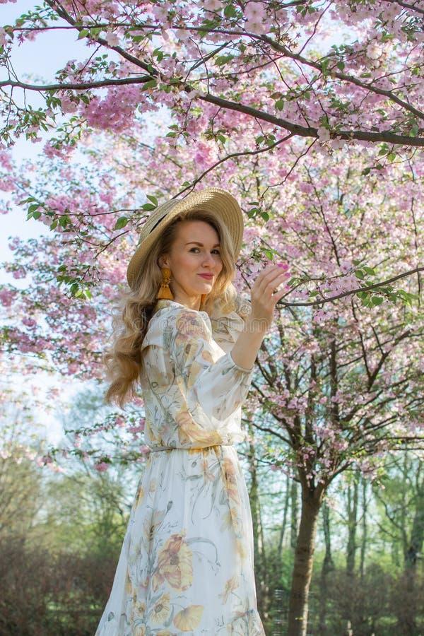 Mulher caucasiano bonita bonita no vestido que est? de levantamento no fundo da cereja de floresc?ncia de Jap?o imagens de stock royalty free
