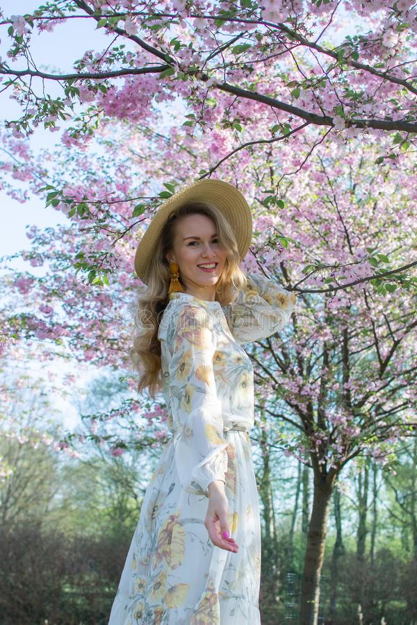 Mulher caucasiano bonita bonita no vestido que est? de levantamento no fundo da cereja de floresc?ncia de Jap?o imagem de stock