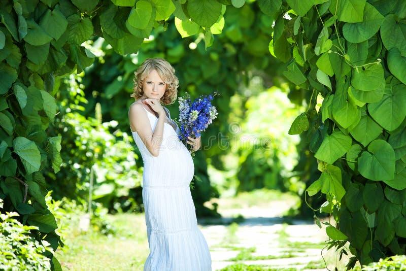 Mulher caucasiano grávida foto de stock