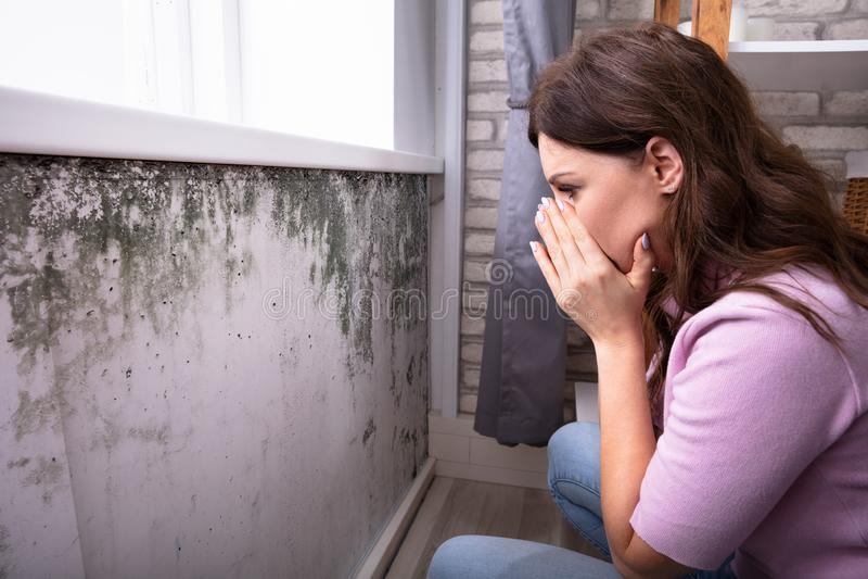 Mulher chocada que olha o molde na parede imagens de stock royalty free