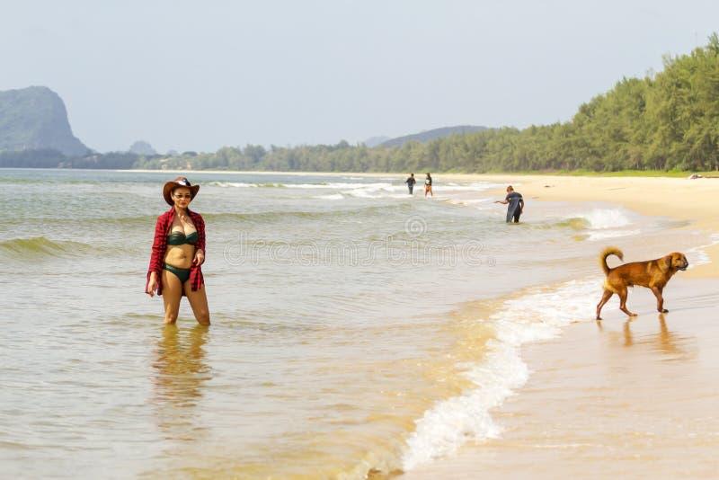 Mulher com biquini 'sexy' e o cão exteriores na praia fotografia de stock royalty free