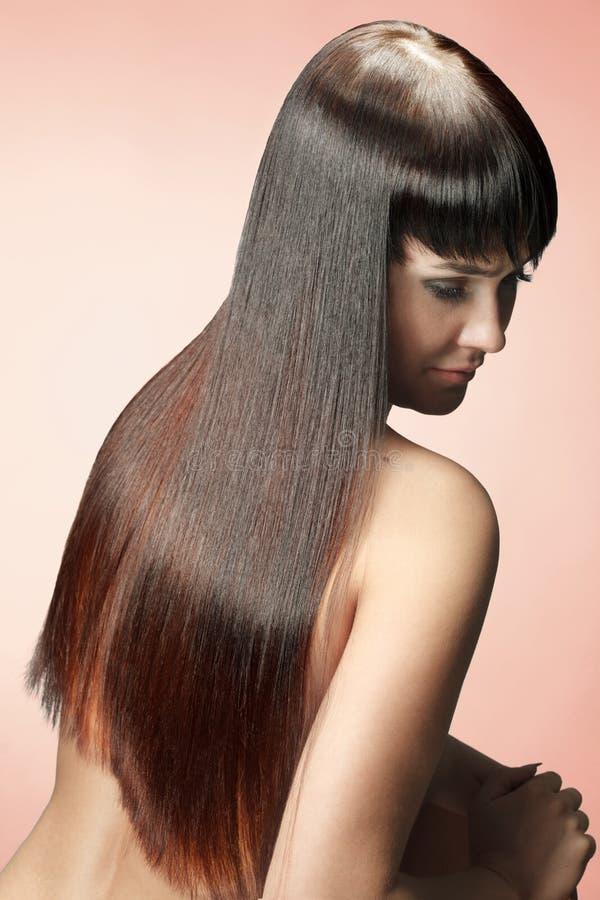 Mulher com cabelos da beleza imagens de stock royalty free