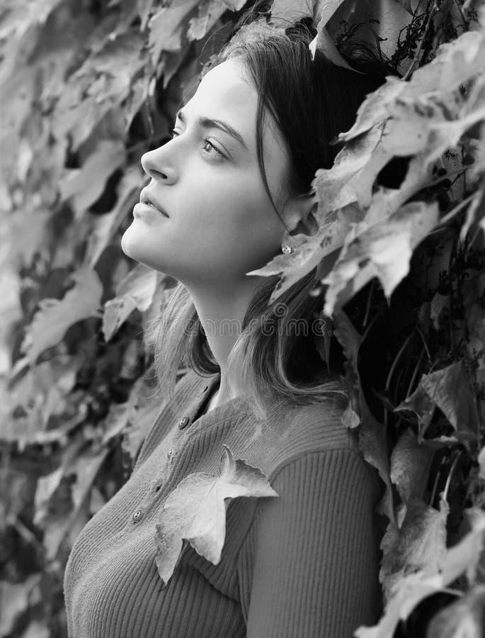 A mulher com a cara sonhadora na hera do outono deixa o fundo Senhora que levanta perto das folhas vermelhas A menina com cabelo  imagens de stock royalty free