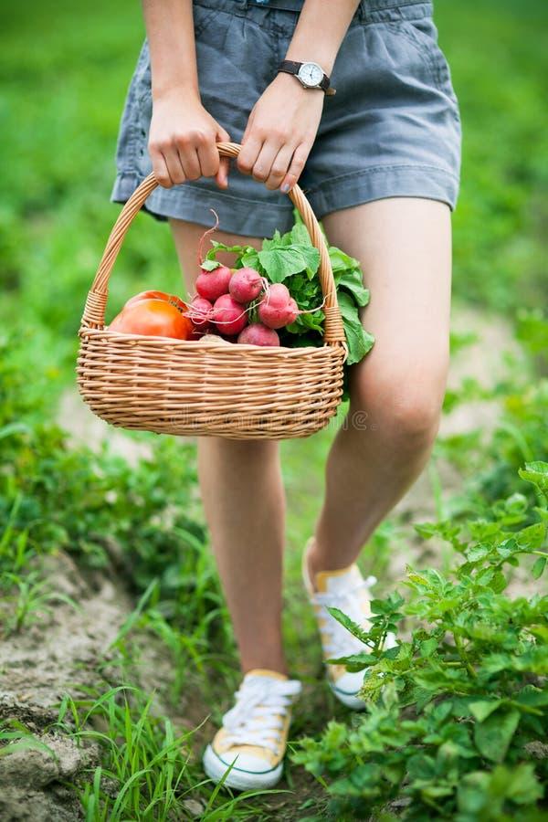 Mulher com a cesta dos vegetais fotografia de stock
