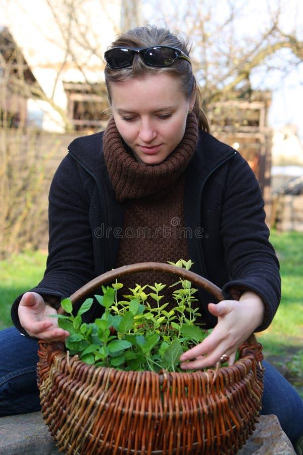 Mulher com ervas imagens de stock royalty free