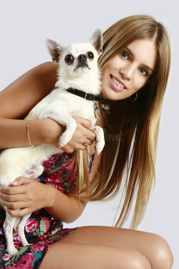 Mulher com filhote de cachorro da chihuahua foto de stock