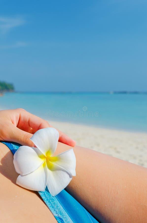 Mulher com flor fotografia de stock royalty free