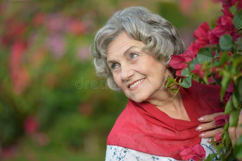 Mulher com flor vermelha fotografia de stock royalty free