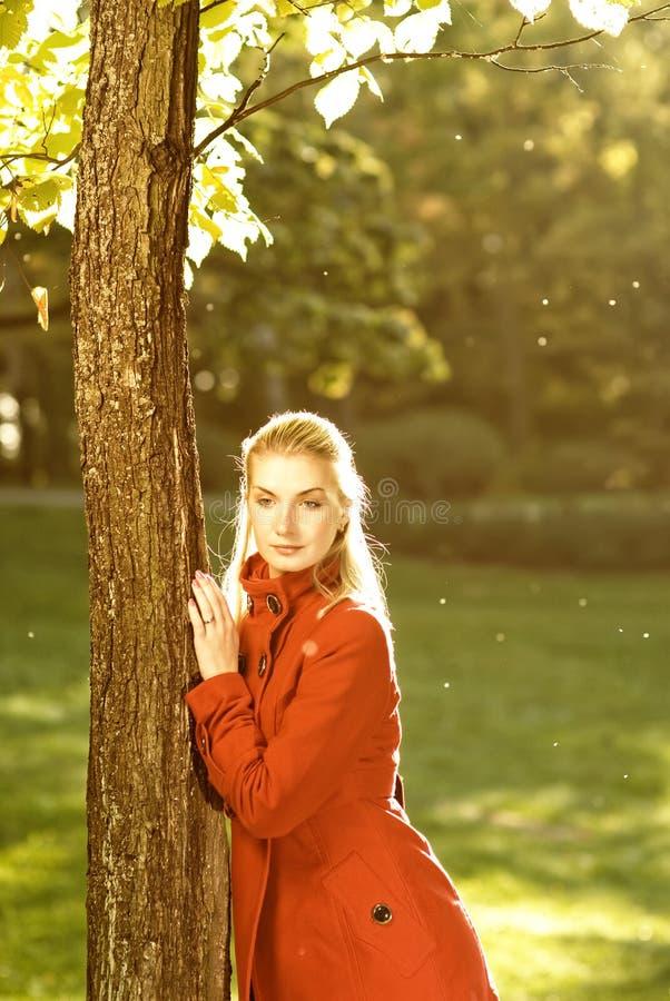 Mulher com folhas de outono fotografia de stock