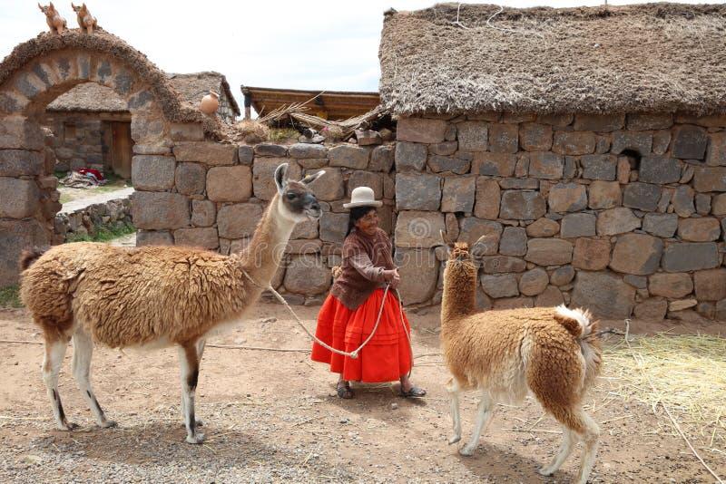A mulher com Guanaco está levantando para turistas no Peru fotos de stock royalty free