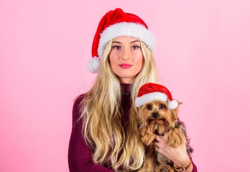 Mulher com o chapéu de Santa do desgaste do cachorrinho Comemore o Natal com animais de estimação Razões amar o Natal com animais fotografia de stock royalty free