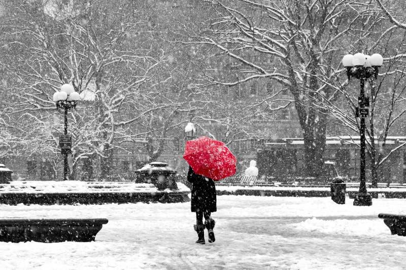 Mulher com o guarda-chuva vermelho na neve preto e branco de New York City imagem de stock