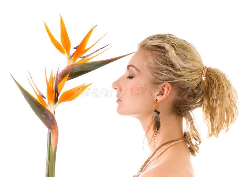 Mulher com o pássaro de paraíso imagem de stock royalty free
