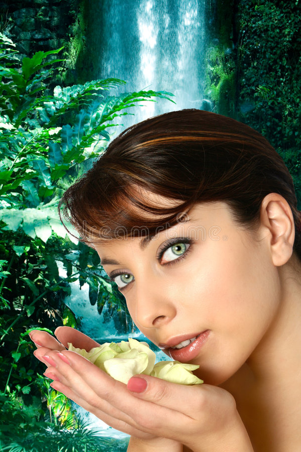 Mulher com punhado das pétalas cor-de-rosa com cachoeira fotos de stock