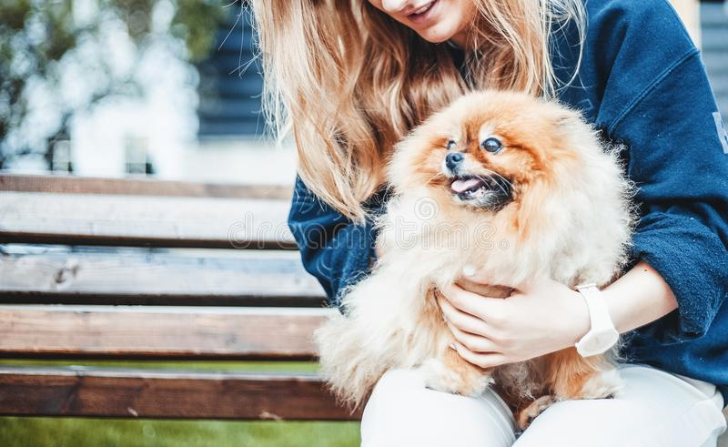Mulher com seu cachorrinho de Pomeranian em suas mãos em um banco no p fotografia de stock