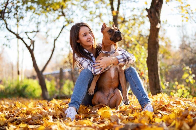 Mulher com suas caminhadas do cão no parque no outono foto de stock