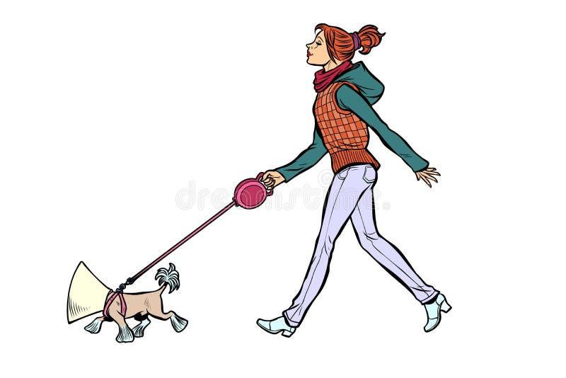 Mulher com um cão, um cão em um colar protetor ilustração stock