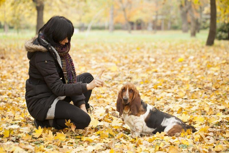 A mulher com um cão no parque imagem de stock