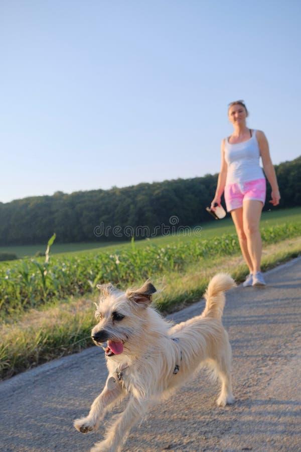 Mulher com um cão que anda abaixo de uma rua do cascalho imagem de stock