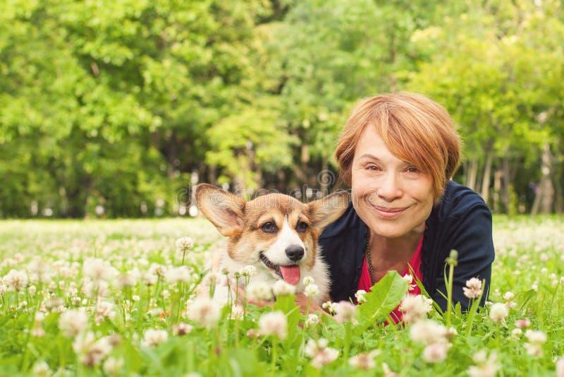 Mulher consideravelmente mais idosa com seu cão no parque em um dia ensolarado fotos de stock royalty free