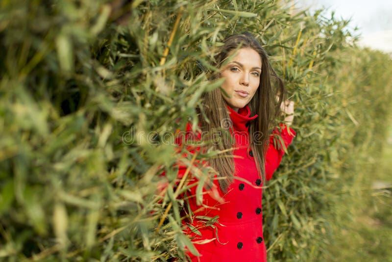 Mulher consideravelmente nova no revestimento vermelho imagem de stock
