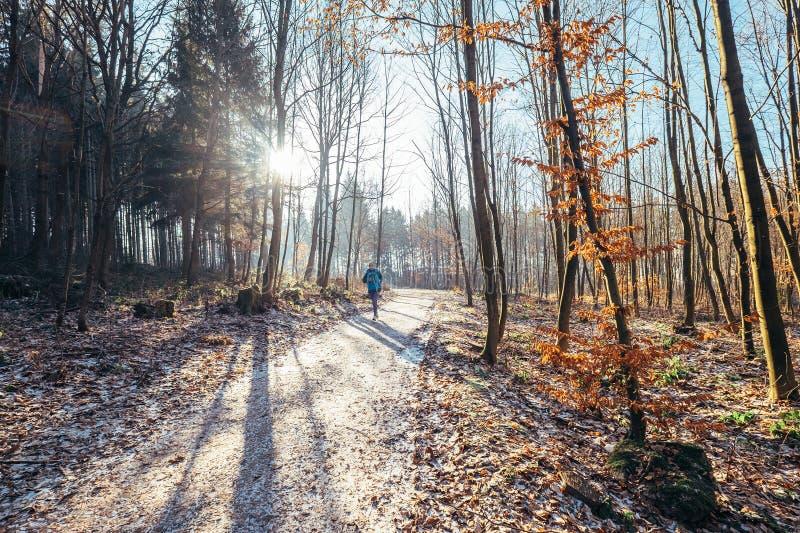 A mulher corre no parque - outono atrasado, primeira neve imagens de stock