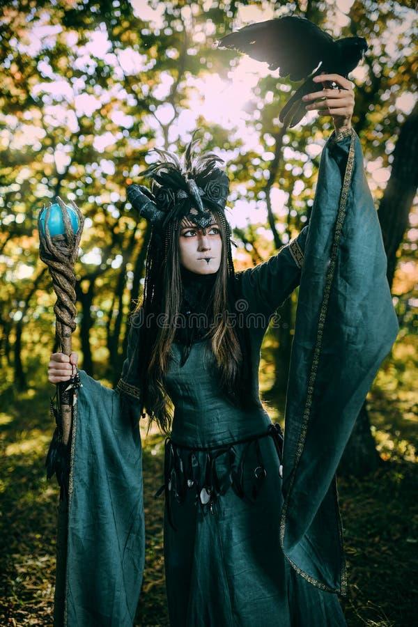 Mulher-curandeiro com chifres foto de stock royalty free