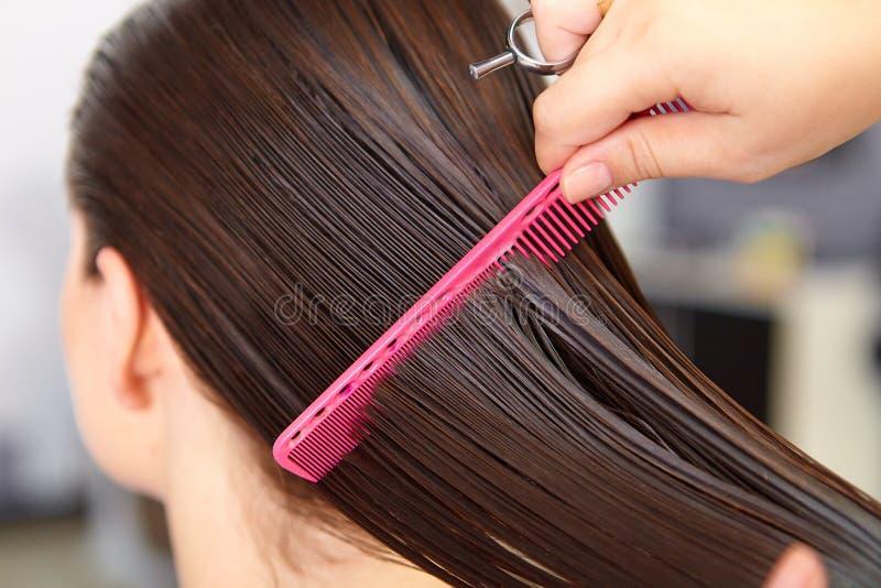Mulher da beleza com cabelo preto liso saudável e brilhante longo Corte de cabelo da mulher corte foto de stock