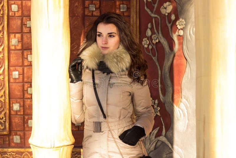 Mulher da beleza no inverno fotos de stock