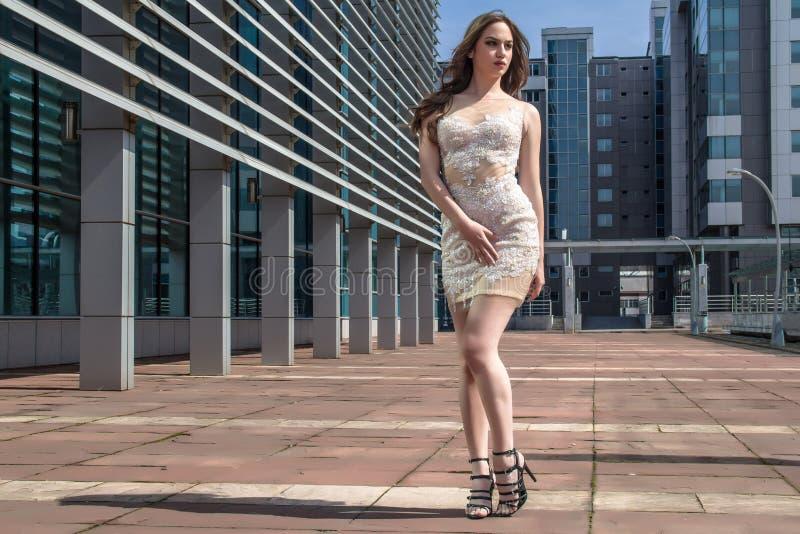 Mulher da forma no vestido imagem de stock