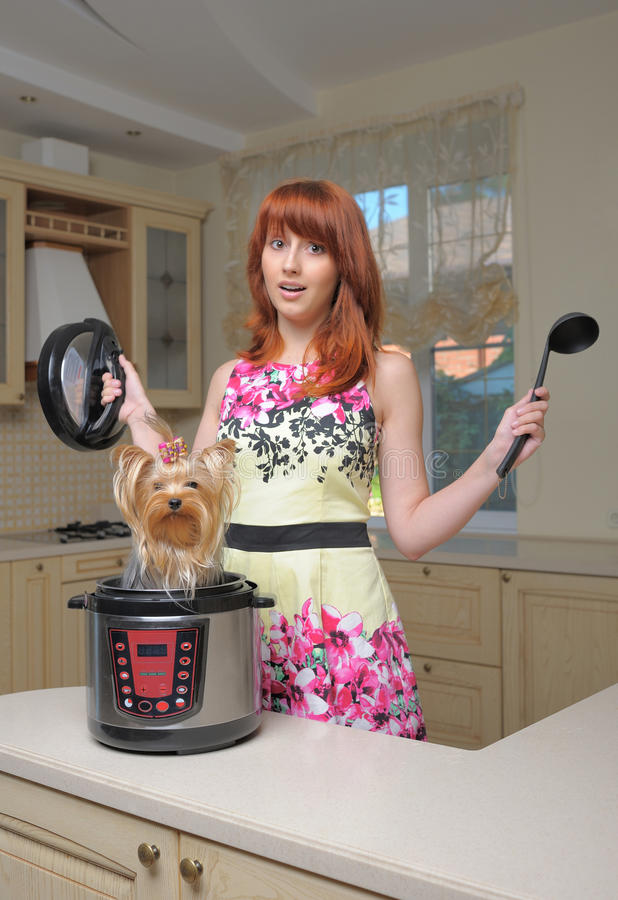 Mulher de cabelo vermelha com multicooker novo e o cão pequeno imagem de stock royalty free