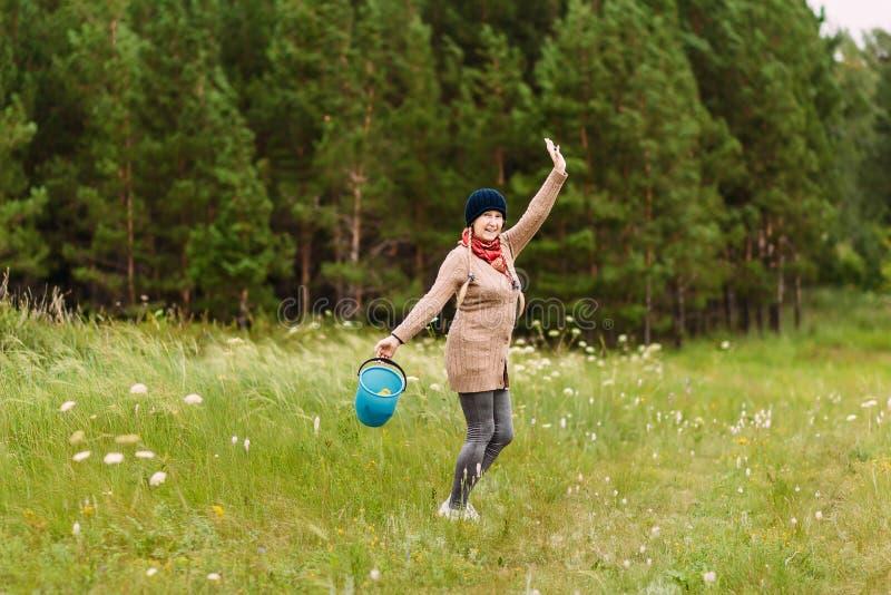 A mulher de cinquenta anos feliz alegre recolhe cogumelos em uma cubeta na floresta foto de stock