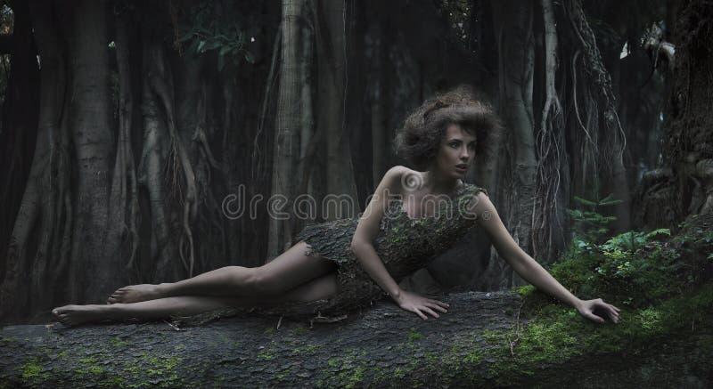 Mulher de Eco fotos de stock