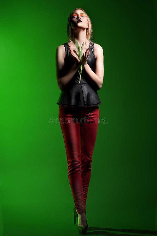 Mulher de Fasion com composição e penteado profissionais fotografia de stock