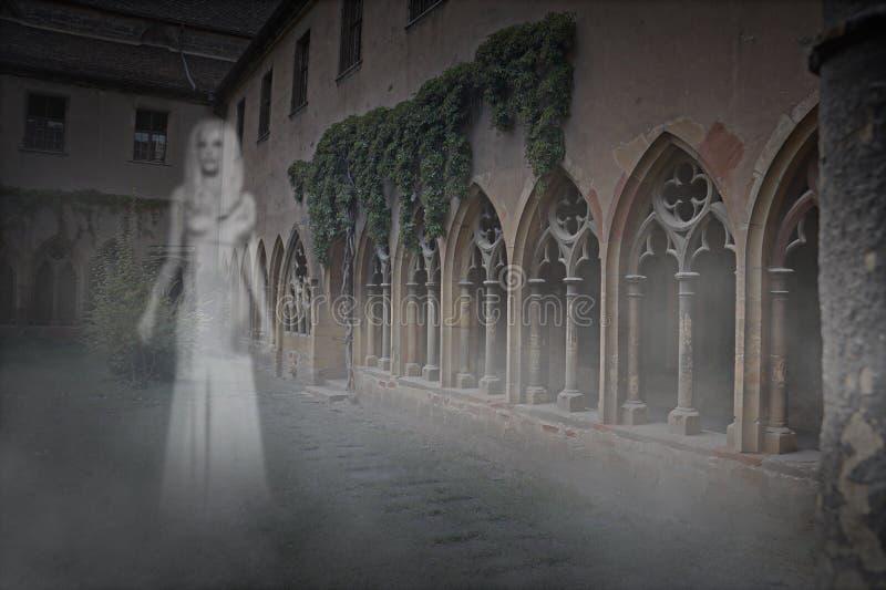 Mulher de Ghost no pátio ilustração do vetor