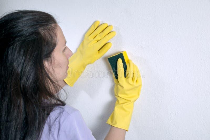 Mulher de limpeza imagens de stock