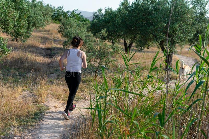 Mulher de meia idade apta que corre atrav?s de um campo rural imagens de stock