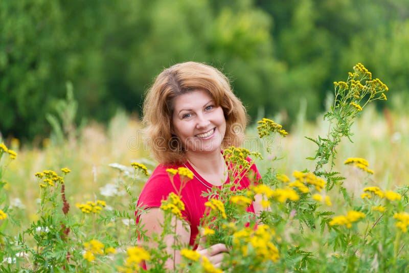 Mulher de meia idade no prado com tansy fotos de stock