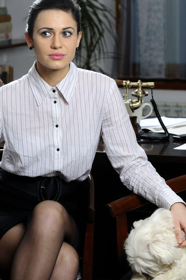 Mulher de negócio e cão bonito imagens de stock royalty free